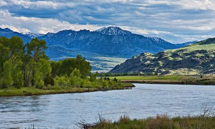 11 Magical Montana Reunion Locations for Travel Groups
