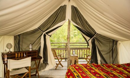 What is Glamping, and Why is it Great for Reunion Groups?