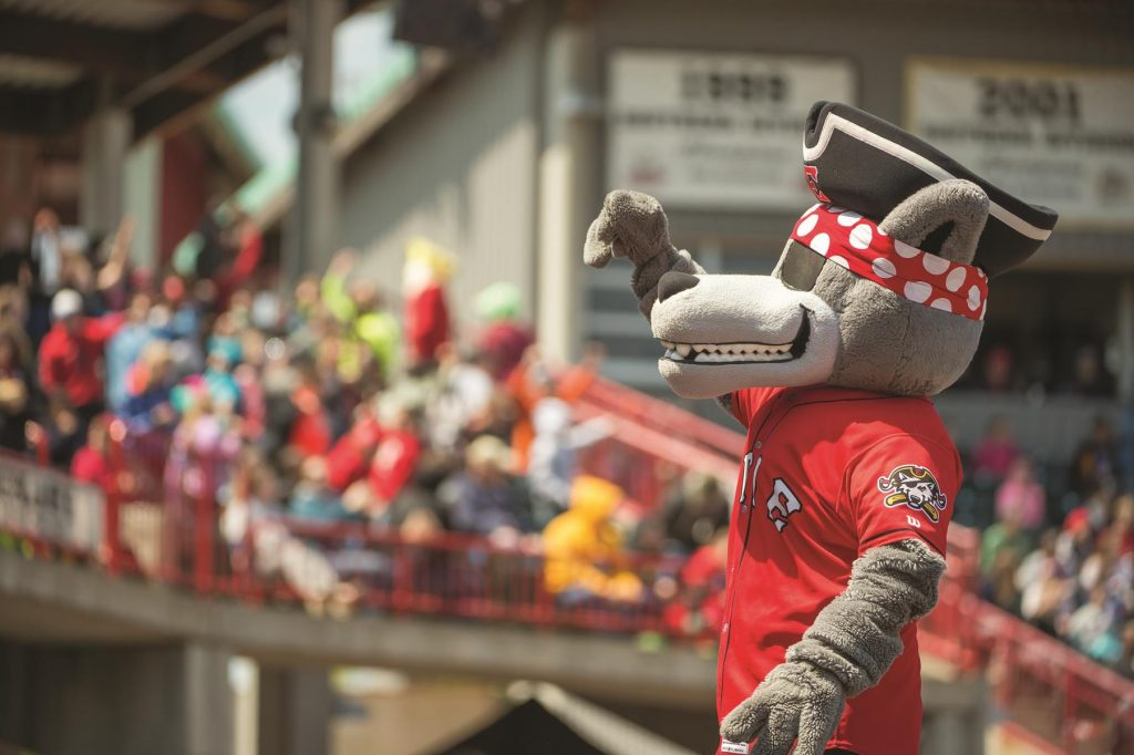 The Erie Sea Wolves, Double-A affiliate of the Detroit Tigers, offer minor league fun at UMPC Park.