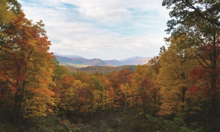Smoky Mountain Road Trip: Unexpected Gems