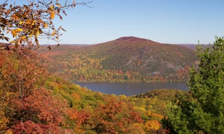 Best Places To See Fall Foliage in the Hudson Valley