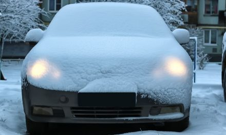 What Snowbirds Should Do With Their Cars During Winter